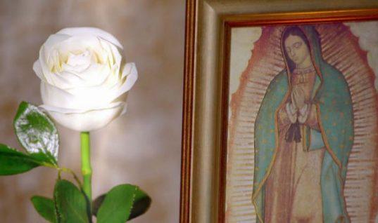 Mil 200 pesos, el salario de los actores de La Rosa de Guadalupe