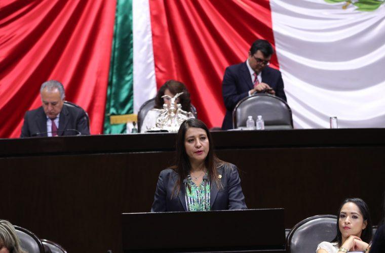 Pide Claudia Reyes aclarar nombramiento de titular de CNDH, Rosario Piedra